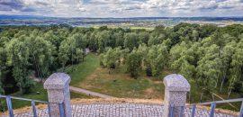 Lasy wokół Krakowa zamknięte dla odwiedzających. Psycholog: To przesadna reakcja. Prawnik: I nielegalna