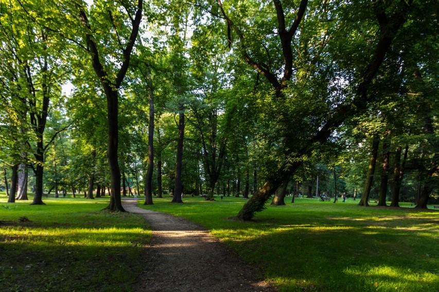 Dwa krakowskie parki z tytułem Lidera Małopolski 2020