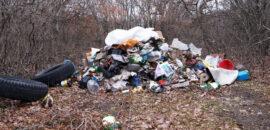 Gdzie zgłaszać dzikie wysypiska i spalanie śmieci?