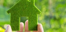 Jak być bardziej eko? – wywiad z Przemysławem Poszwą, autorem bloga Eko-logicznie