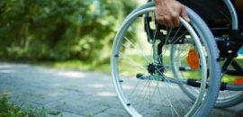 Krakowska przyroda dla osób z niepełnosprawnościami