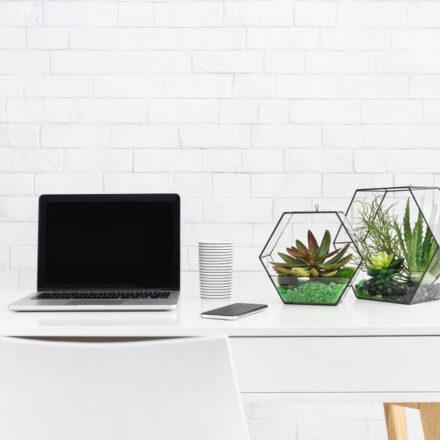 Ekologiczne biuro – miejsce pracy, które wspiera środowisko