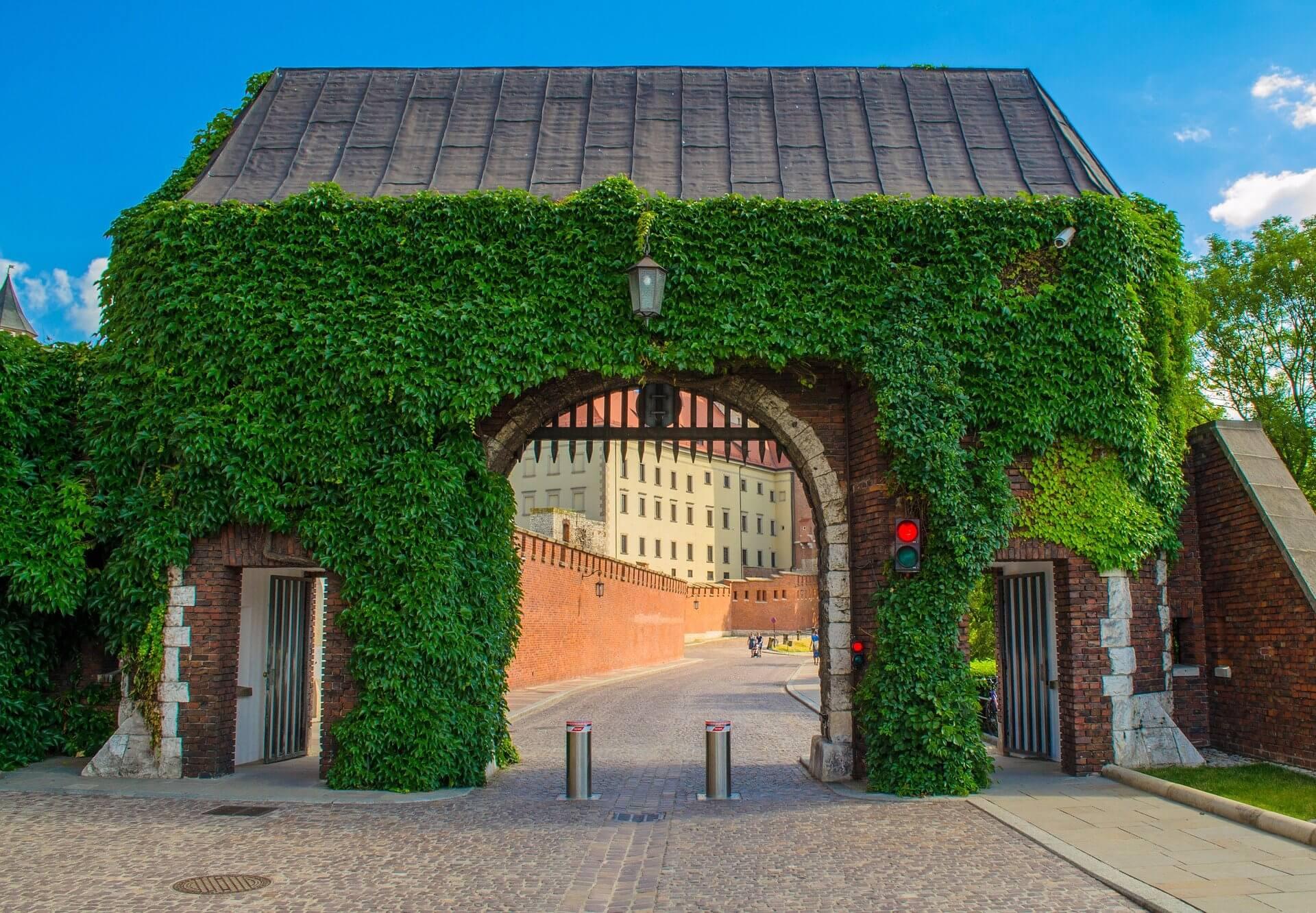 Miejskie ekorozwiązania dla Krakowa