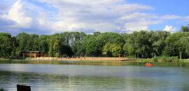 Teraz w zielone gramy! – projekt ukazujący Nową Hutę z naturalnej strony